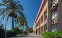 Universidades socias